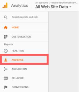 Google Analytics Audience Tab